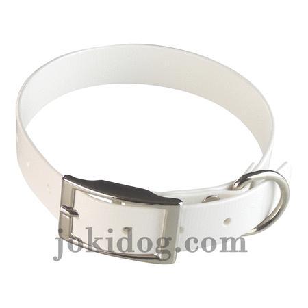 Achat : Collier biothane 25 mm x 55 cm blanc  (Colliers pour chiens) - Colliers pour chiens neuf et d'occasion - Achat et vente