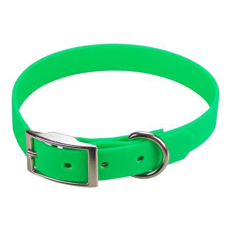 Achat : Collier biothane beta 19 x 45 cm vert  (Colliers pour chiens) - Colliers pour chiens neuf et d'occasion - Achat et vente