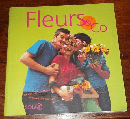 Achat : Fleurs & co- 40 idées originales autour des fleurs  (Documentation livres) - Documentation livres neuf et d'occasion - Achat et vente
