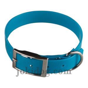 Collier biothane 25 mm x 55 cm turquoise