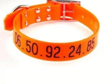 Achat : Collier hunt us 25mm avec gravure  (Colliers pour chiens) - Colliers pour chiens neuf et d'occasion - Achat et vente