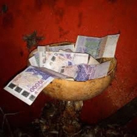 Achat : Calebasse magique multiplicateur d'argent  (Arbres et buissons) - Arbres et buissons neuf et d'occasion - Achat et vente