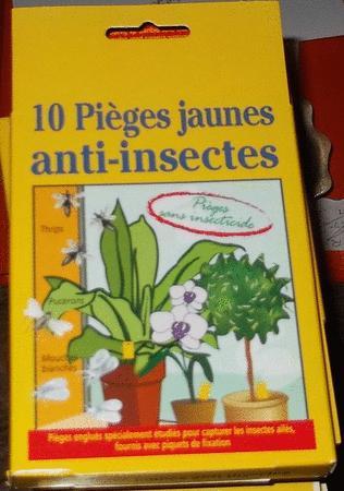 Achat : Pièges anti-insectes sans pesticide - profertyl  (Traitements des cultures) - Traitements des cultures neuf et d'occasion - Achat et vente