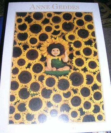 Achat : Puzzle 900 pièces neuf  (Puzzles adultes) - Puzzles adultes neuf et d'occasion - Achat et vente