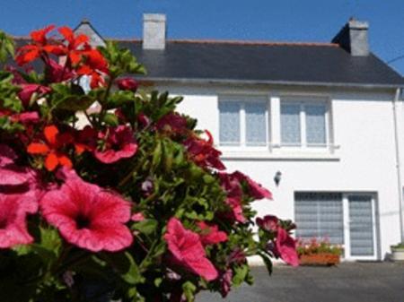 Achat : Location 2 personnes le p'tit hortensia  (Locations vacances) - Locations vacances neuf et d'occasion - Achat et vente