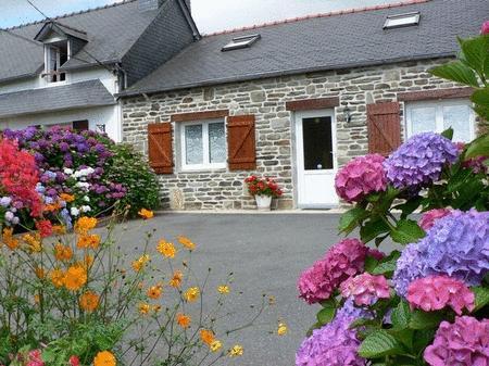 Les Hortensias Pleyben centre Finistère