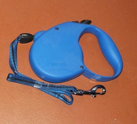 Achat : Laisse rétractable 5 mètres flexi bleue  (Laisse pour chiens) - Laisse pour chiens neuf et d'occasion - Achat et vente