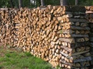 Grande promotion de bois de chauffages