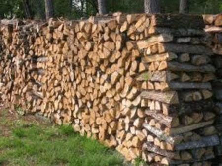 Achat : Grande promotion de bois de chauffages  (Autres dans bricolage) - Autres dans bricolage neuf et d'occasion - Achat et vente