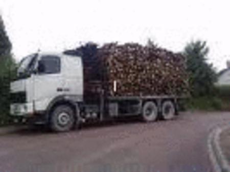 Achat : Bois sec pur chene, alloeu, obepine, sapin, chene.  (Autres dans bricolage) - Autres dans bricolage neuf et d'occasion - Achat et vente